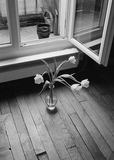 Vase of flowers under a windowsill